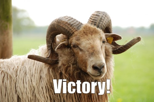 Punctuationless Press Release: The Ram